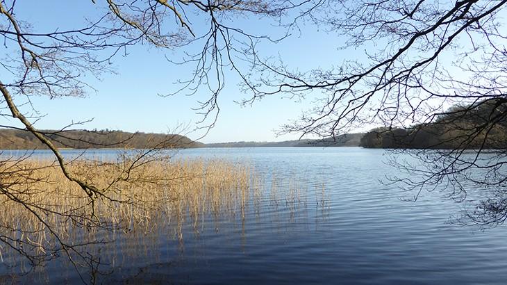 Gåtur ned til Hald sø i høj solskin