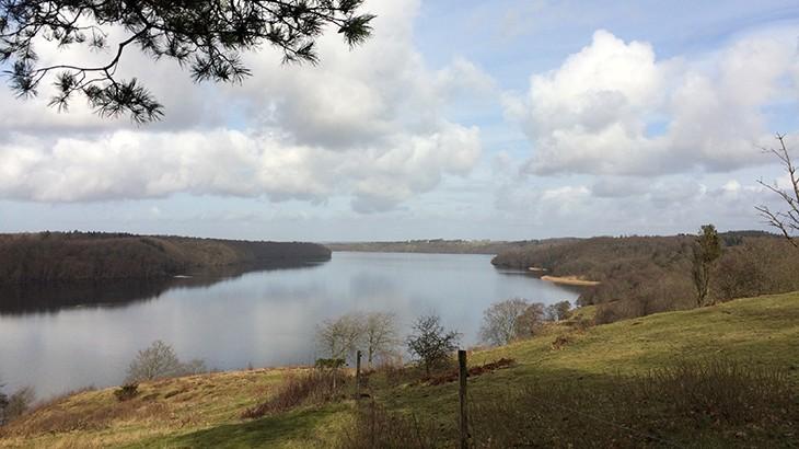 udsigt over hald sø v. Dollerup bakker