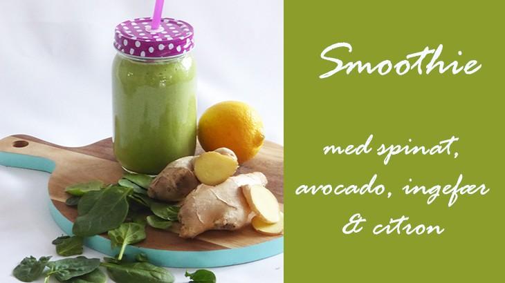 Grønne smoothies med ingefær, spinat, avocado mv.
