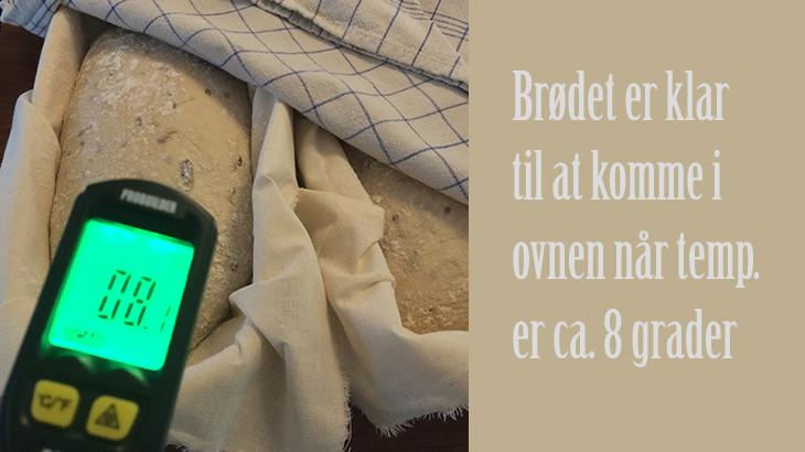 Solsikkebrød - klar til ovnen - tantestrejf.dk