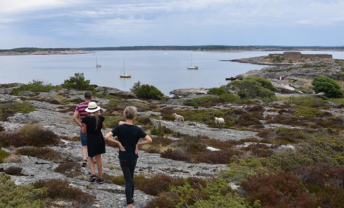 Gåtur på Akerøy med udsigt til Martha og Festningholmen.