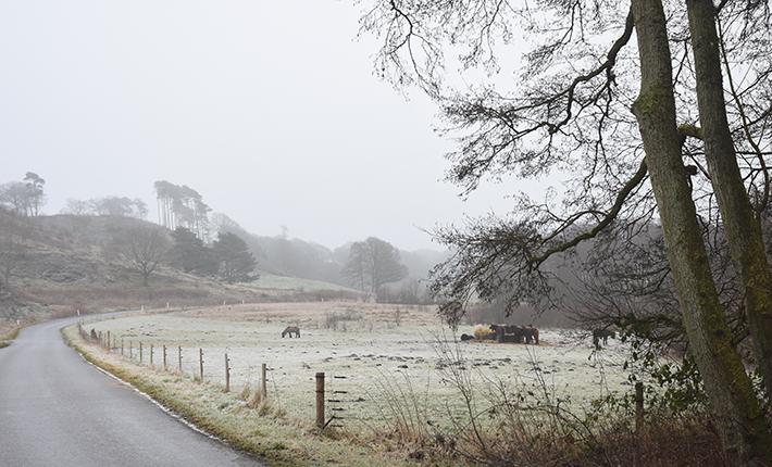 Dollerupbakker en tåget og kold vinterdag i 2019