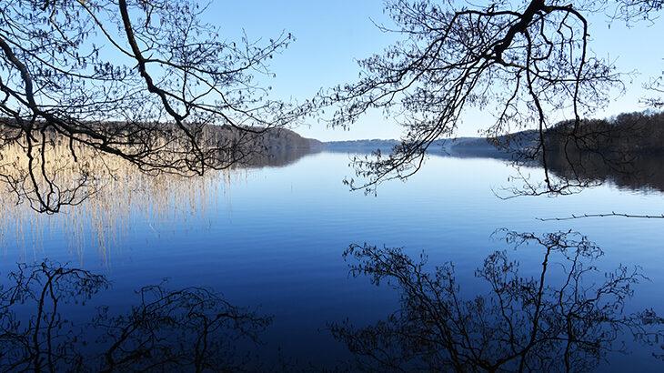 Hald sø en stille forårsdag