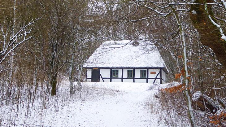 vinterstemning i Dollerup bakker - januar 2016