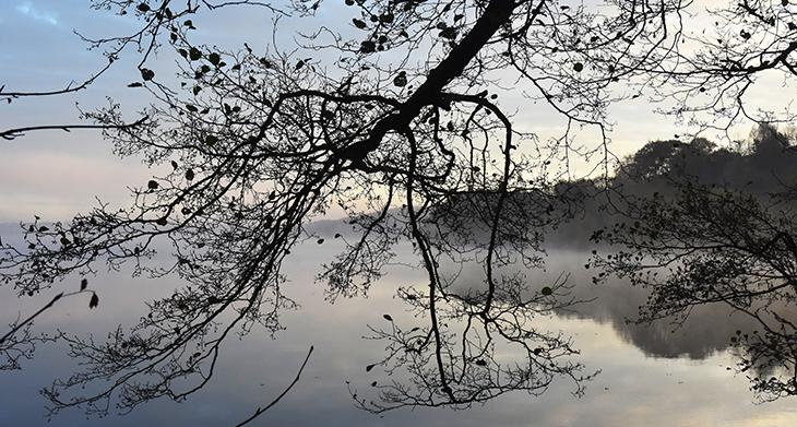 Hald sø en efterårs morgen