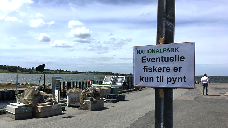 Langeland - Ristinge havn